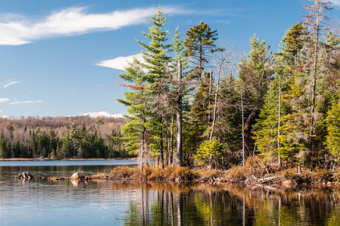 7. Cranberry Lake State Campground, Cranberry Lake