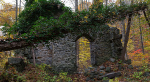 Nature Is Reclaiming This One Abandoned Maryland Spot And It's Actually Amazing