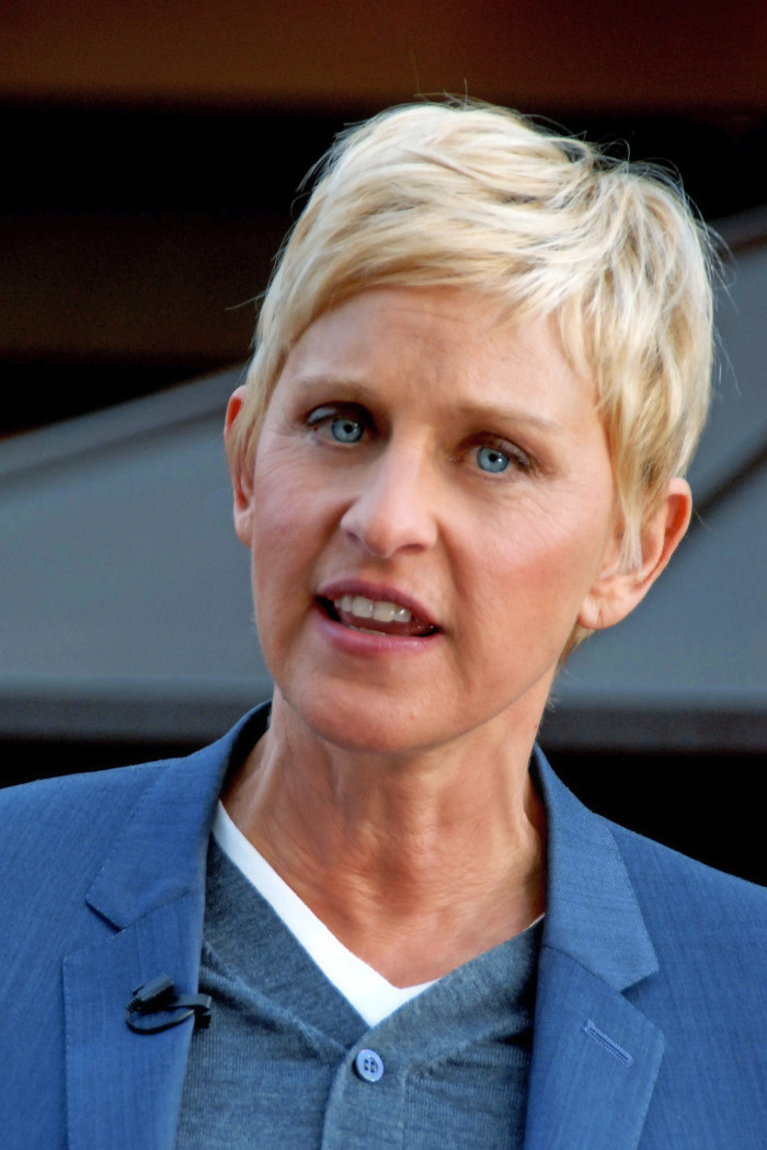 7. Ellen DeGeneres