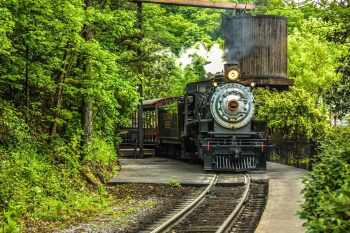 1. Anyone planning a trip to Dollywood?
