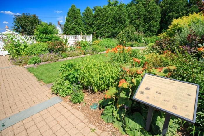 7. Frelinghuysen Arboretum
