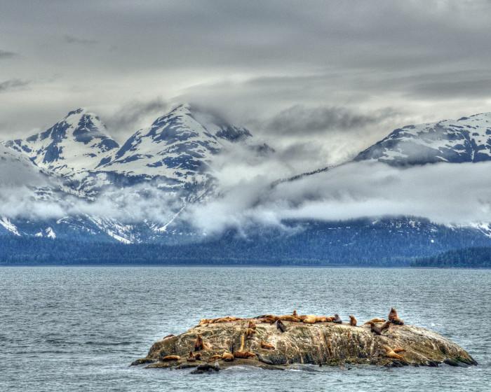 GC 3 - Marble Islands - Flickr - Jill Blue Moonbeam Studio