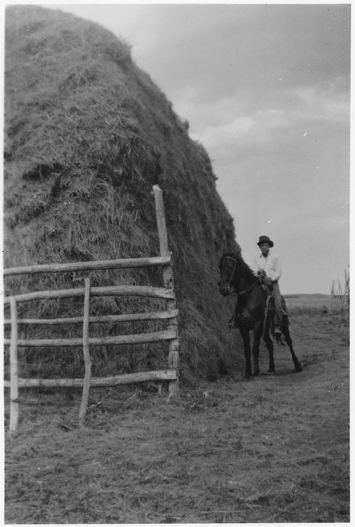 6. Rancher next to a haystack after a day of haying - 1950