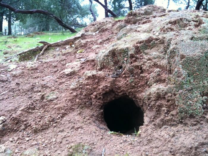 3. Mel's Hole