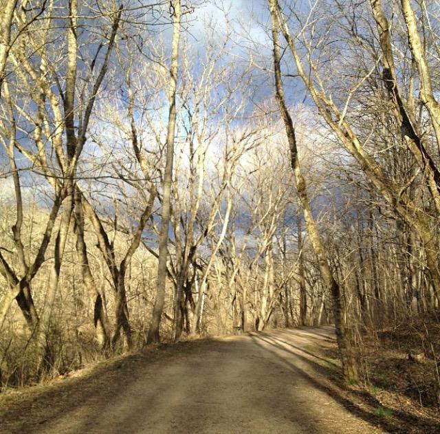 8. Chessie Nature Trail