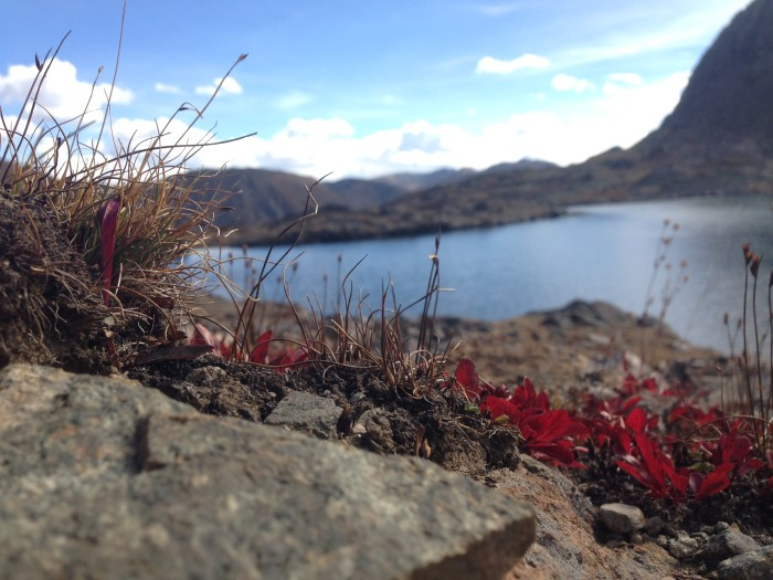 4. Chihuahua Lake