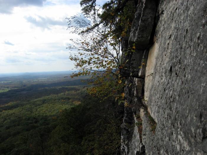 7. The Shawangunk Ridge