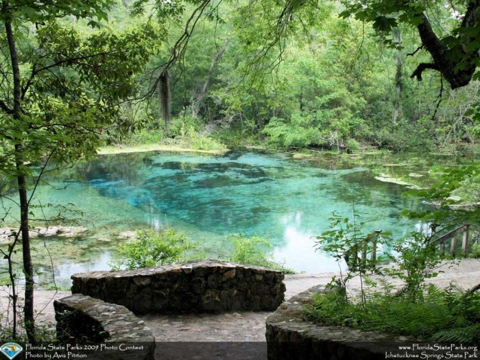 Ichetucknee-Springs_contest_Avis-Pitmon_Photo-of-the-spring-at-the-north