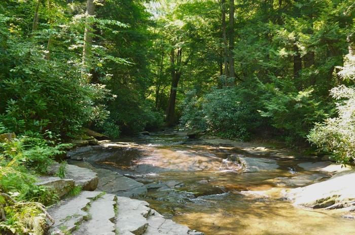 16. Flat Rock Trail, Linn Run State Park