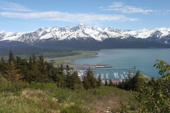 2. Watch The Mt. Marathon Race In Seward  On The Forth Of July