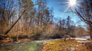 10 Incredible Hikes Under 5 Miles Everyone In Mississippi Should Take