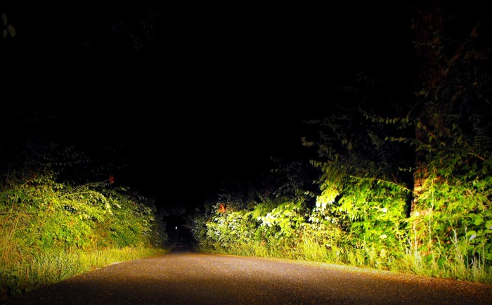2. People tend to get a chill down their spine as they drive down Sleepy Hollow after dark. Those who go out for a casual stroll end up quickening their pace, and with good reason. Legend has it an old hearse just appears out of nowhere, running drivers off the road. There have been multiple reports and they always begin and end the same... With fear.