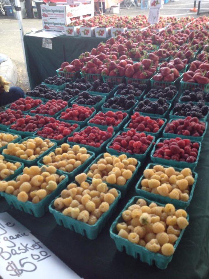 NV Farmers Markets 1.1