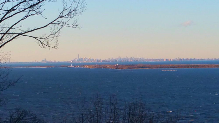 New York City Views
