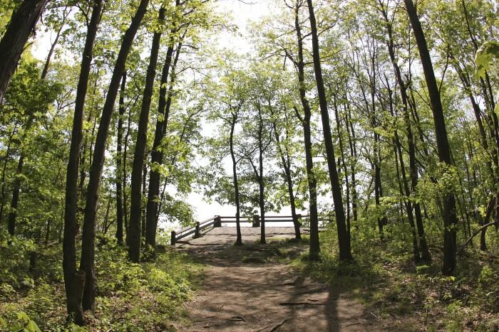 6. Baughman Trail, Ohiopyle State Park