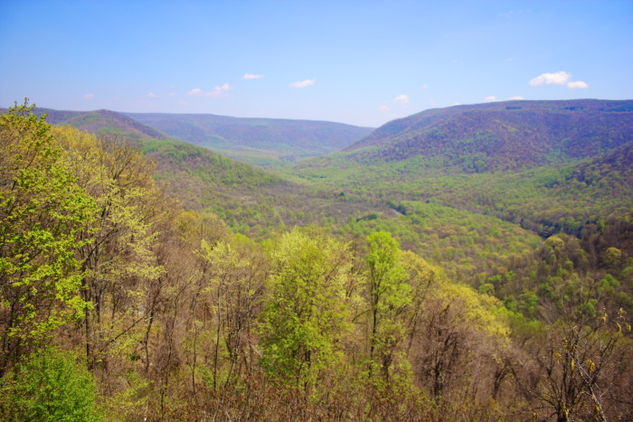 Ohiopyle Baughmans View