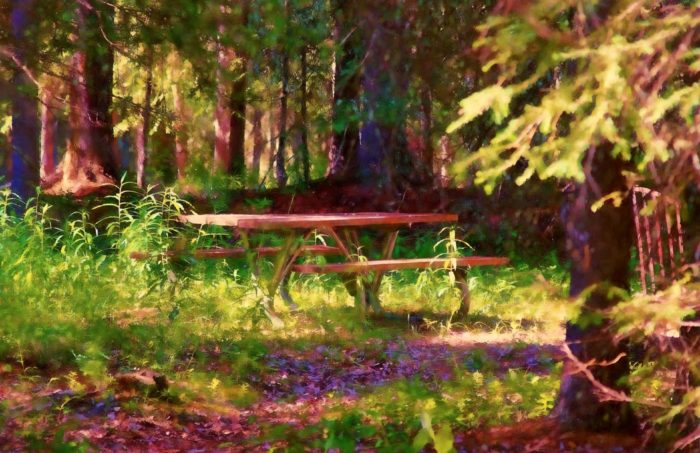 14. Have a picnic in the boreal forest.