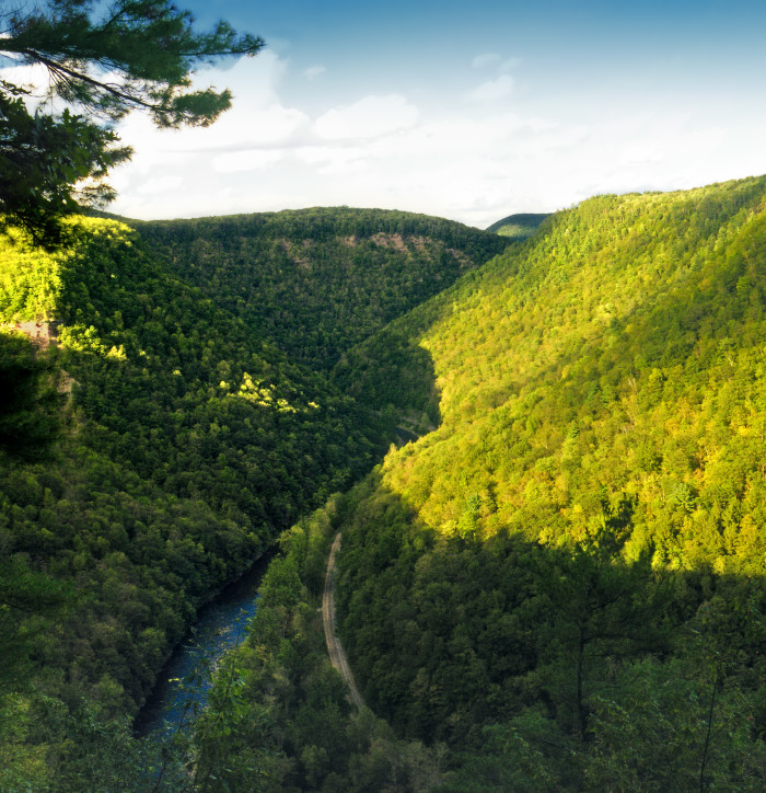 15. Turkey Path Trail, Pine Creek Gorge