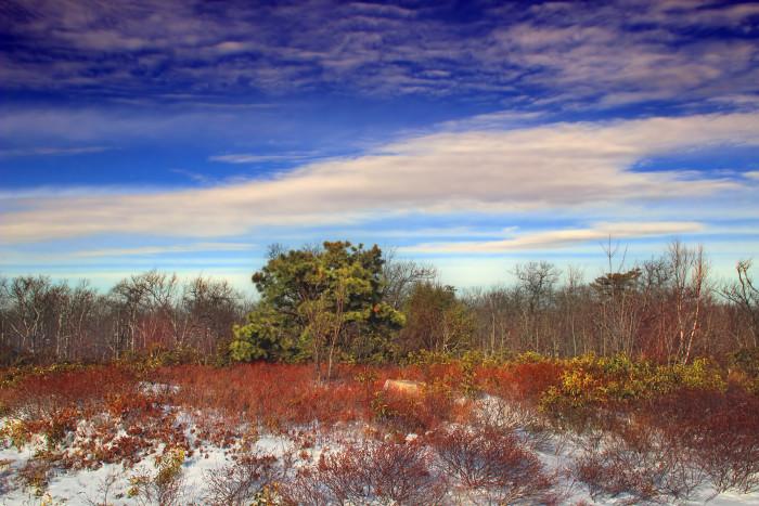 13. Grand View Trail, Ricketts Glen State Park