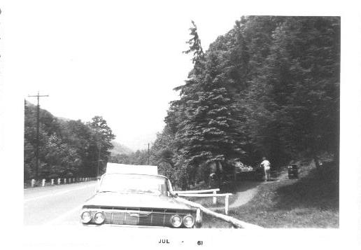 16. A roadside park in the Allegheny mountains (1961)
