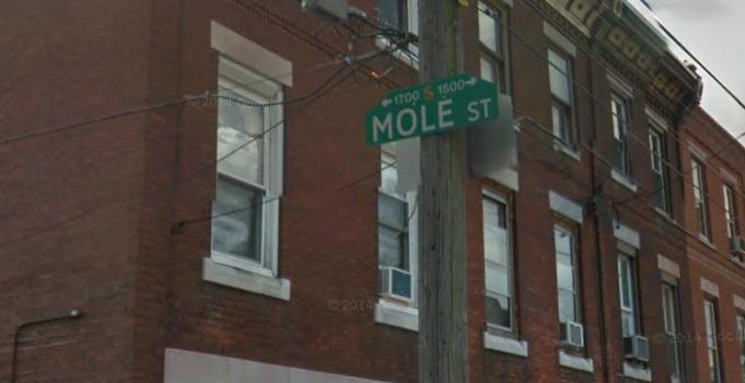 17. Mole Street (Philadelphia)