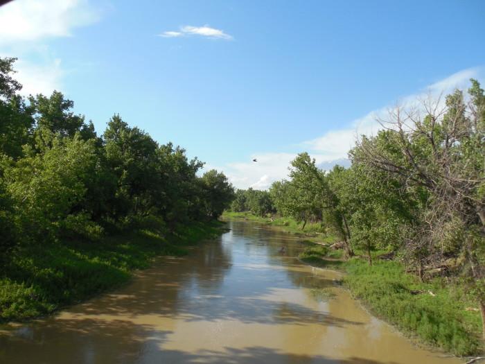 6. Milk River