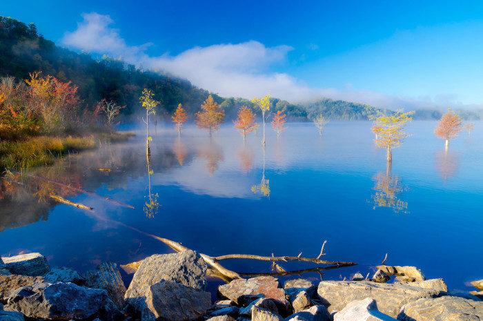 Tennessee: Tellico Plains