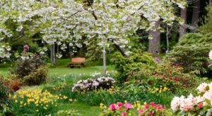 15 Amazing Hidden Gardens To Visit In Washington This Spring
