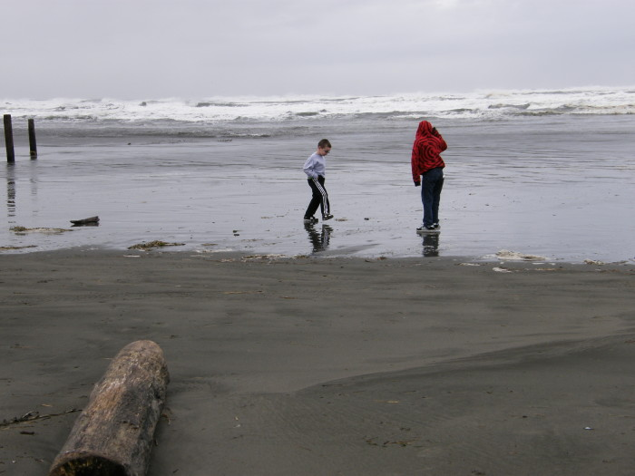 9. They come to Ocean Shores or Long Beach hoping to swim.
