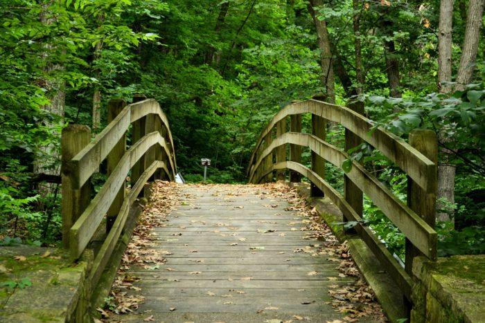 14. Mississippi Palisades State Park
