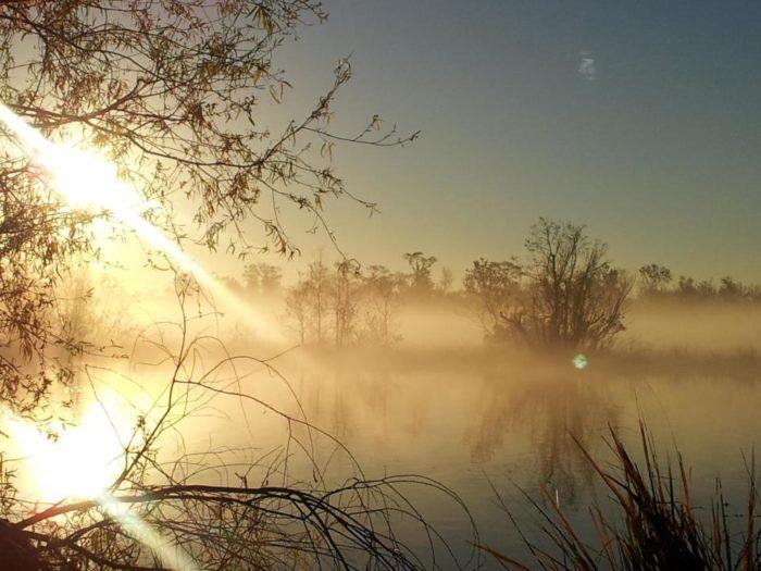 6. Bayou Segnette State Park, Nature Trail, Westwego, LA