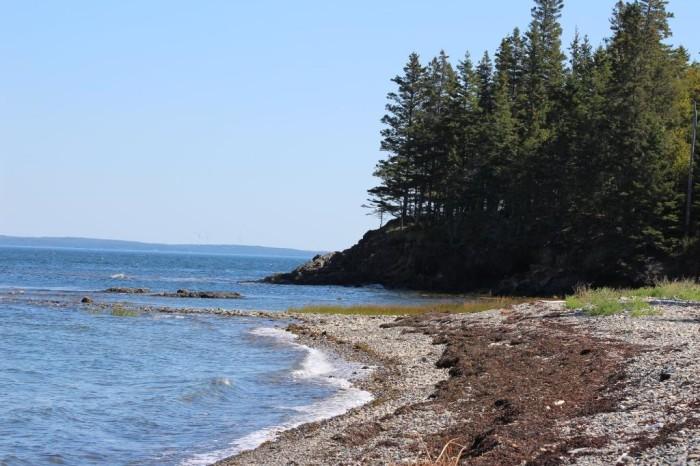 birch-point-beach-state-1
