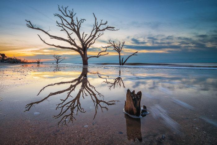 South Carolina: Botany Bay State Preserve