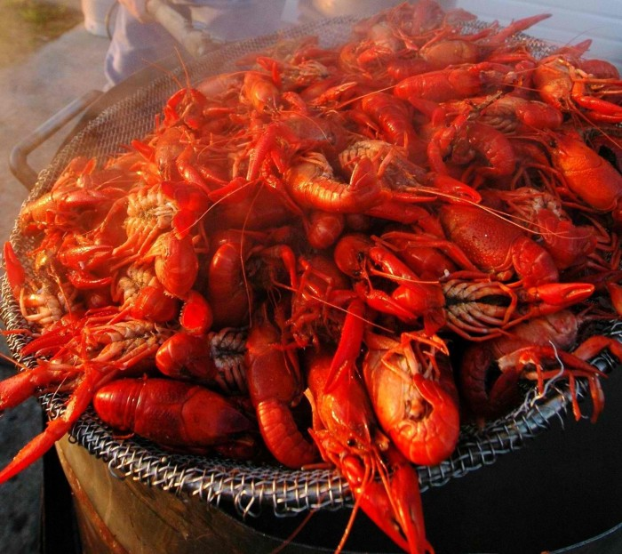 9. Breaux Bridge Crawfish Festival, May 6-8, Breaux Bridge, LA