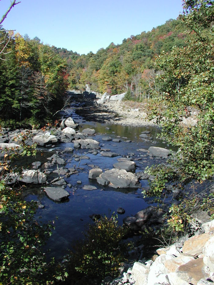 10 of west virginia 39 s most beautiful and special rivers for West virginia out of state fishing license