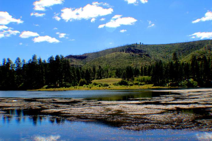 3. Fenton Lake, near Jemez Springs