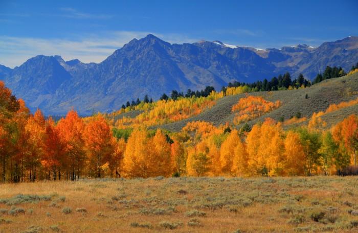 5. Jackson, Wyoming