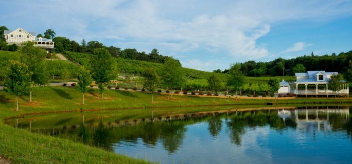 2. Frogtown Winery—Dahlonega
