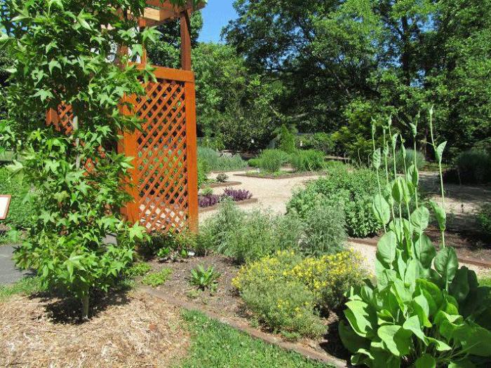13 Beautiful Gardens In South Carolina To Visit