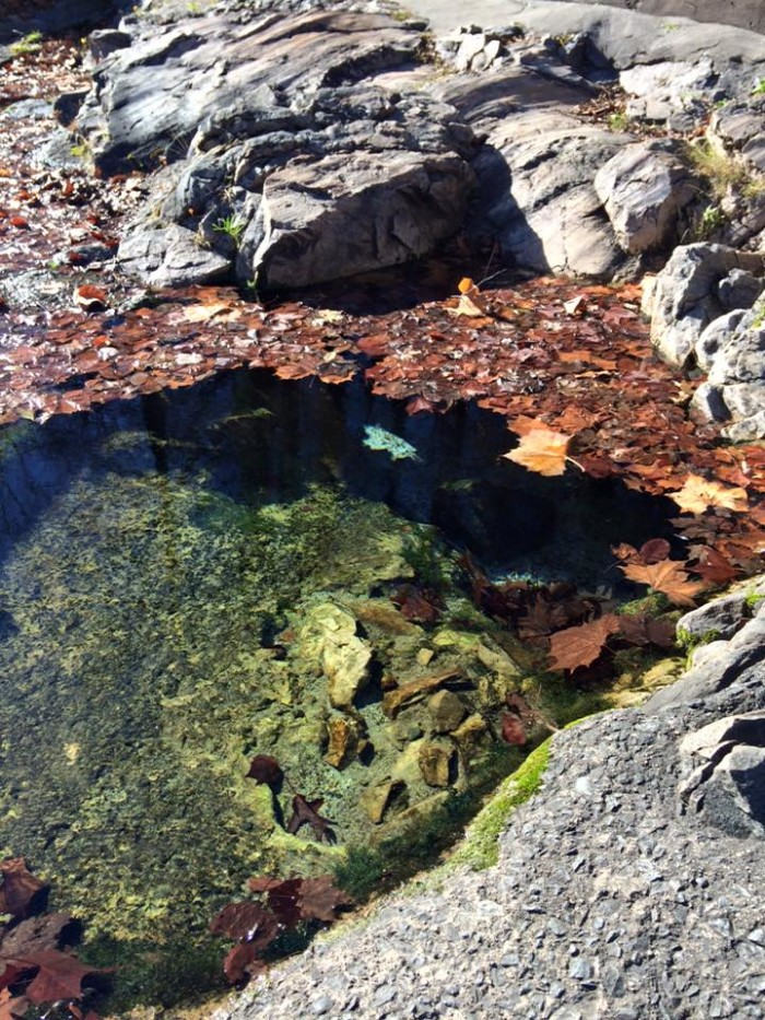 5. Hot springs in the fall.