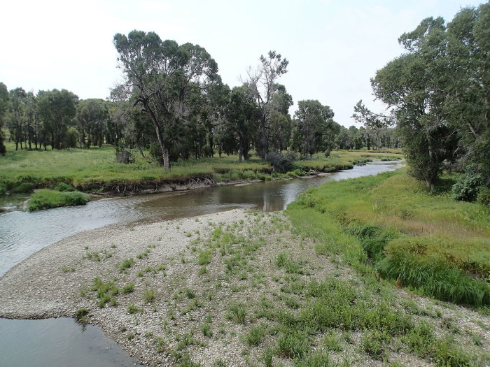 7. Judith River