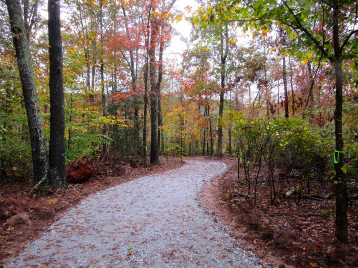 10. Spend the day on an adventure at Lake Conestee Nature Park in Greenville.