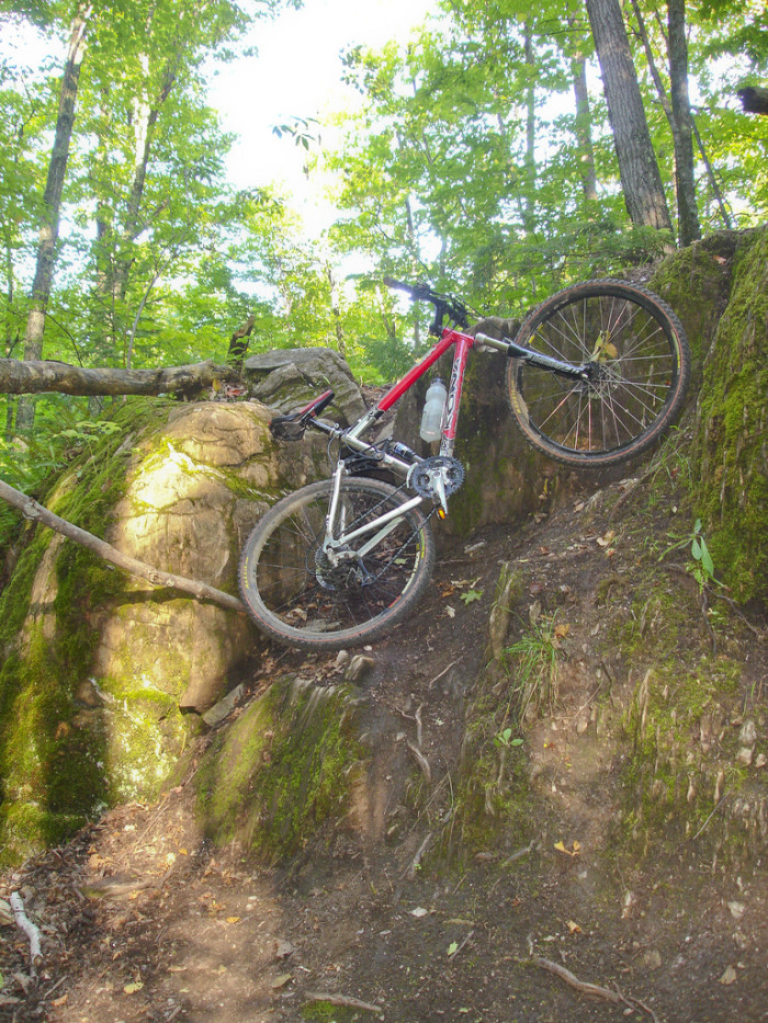 2. Where you can partake in countless mountain biking routes. The Noquemanon Trail Network, for example, is a network of trails that run right through the city.