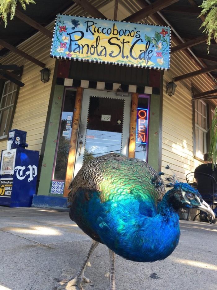 5) Riccobono's Panola St. Café, 7801 Panola St.