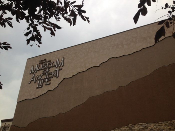 2. The Museum of Ancient Life at Thanksgiving Point, Lehi