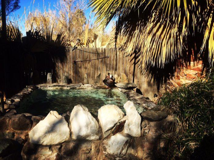 2. El Dorado Hot Spring