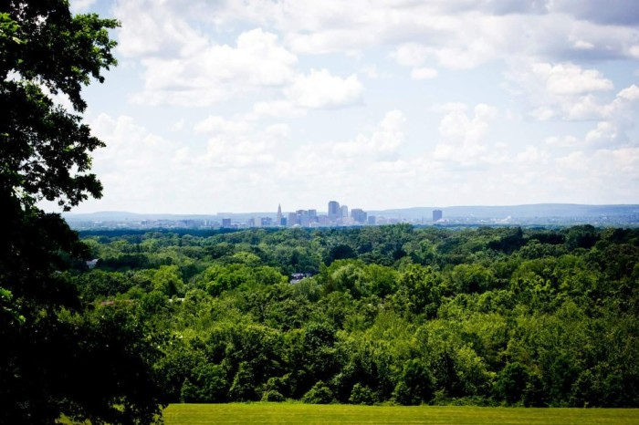 But if those birds don't grab your attention, check out this view of the state's capital. Bazinga!