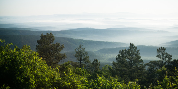 4. Ouachita National Forest