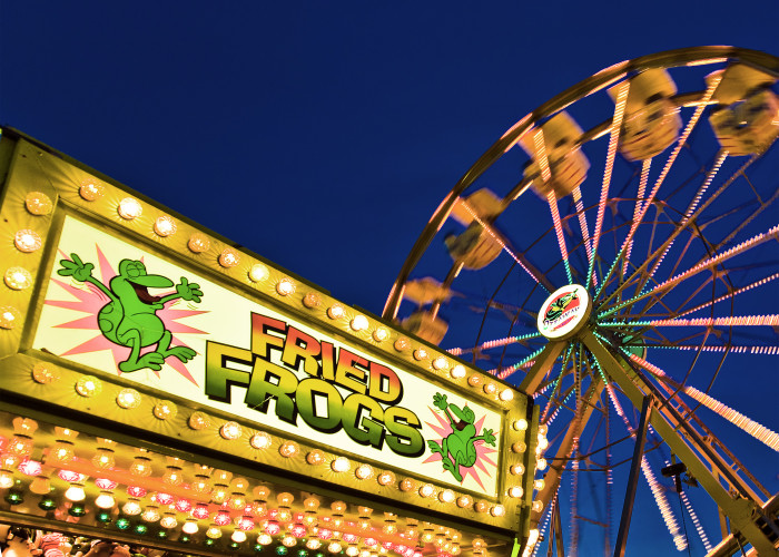 10. I wish the State Fair would never end.