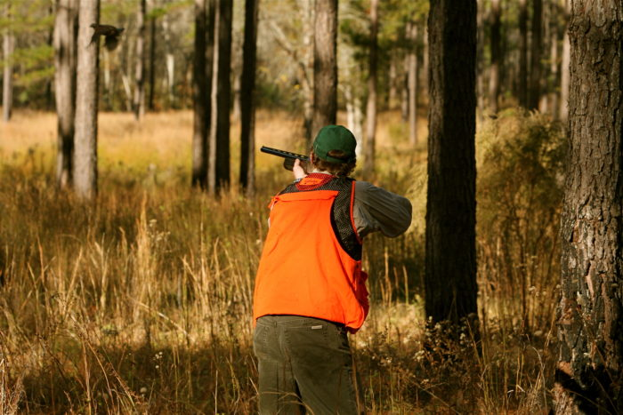 11. Hunting And The Right To Keep And Bear Arms